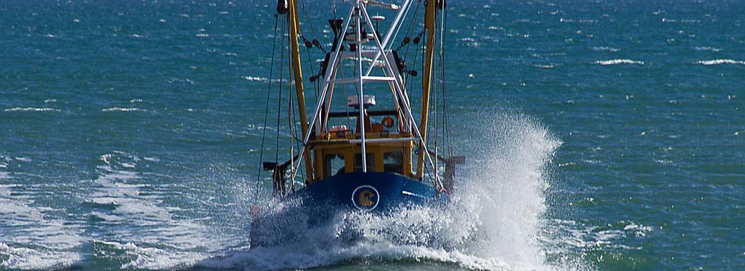 fishing-ship